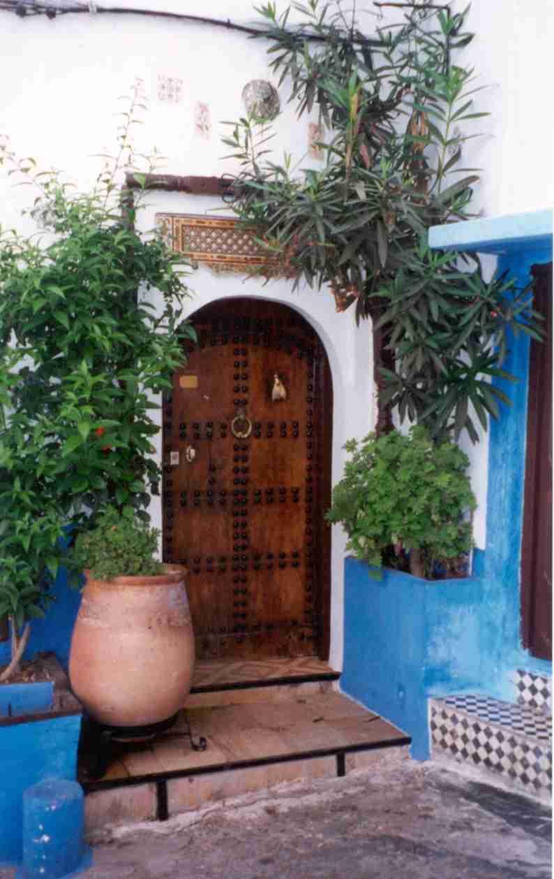 le henn marocain sur pied